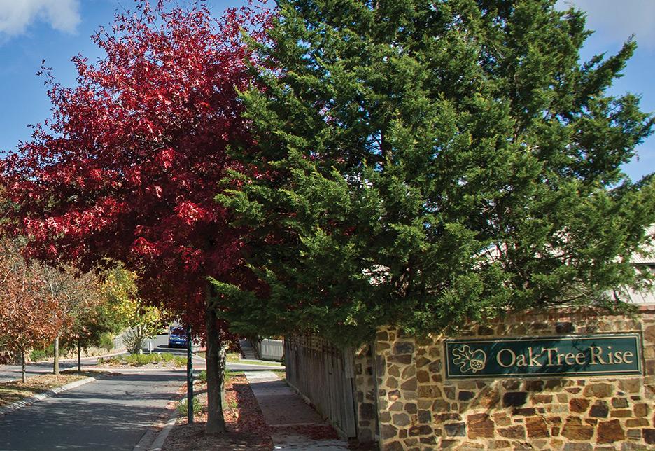 Oak Tree Rise, Lysterfield VIC